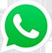 Whatsapp Magnetos Gerais